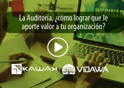 La Auditoría, ¿cómo lograr que le aporte valor a la organización?
